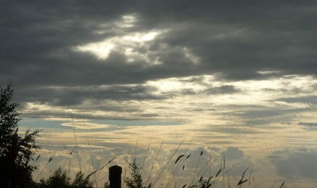 Clouds and Grasses at Sun Rising