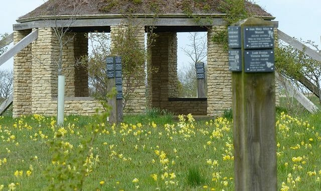 Cowslips before the Roundhouse