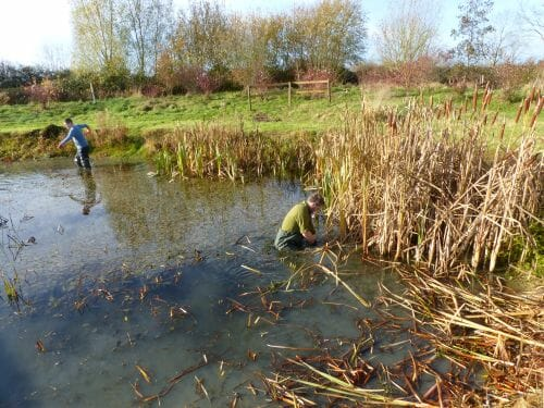 Rich and Tim Clearing the Wildlife Pond