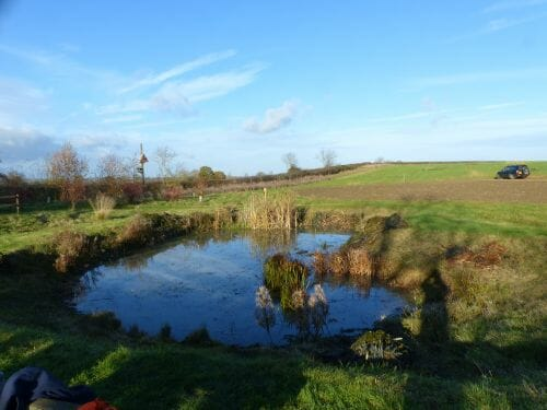 The Wildlife Pond -  after the work was done