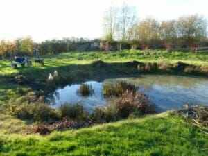 Wildflife Pond after the Annual Clearing at Sun Rising Natural Burial Ground and Nature Reserve