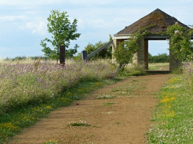 Track to the Roundhouse at Sun Rising Natural Burial Ground and Nature Reserve
