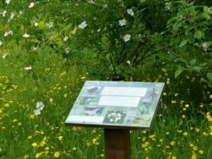 Woodland Habitat Interpretation Board at Sun Rising Natural Burial Ground and Nature Reserve