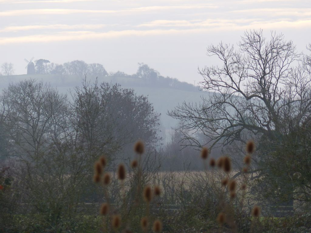 Windmill Hill from Sun Rising Natural Burial Ground and Nature Reserve