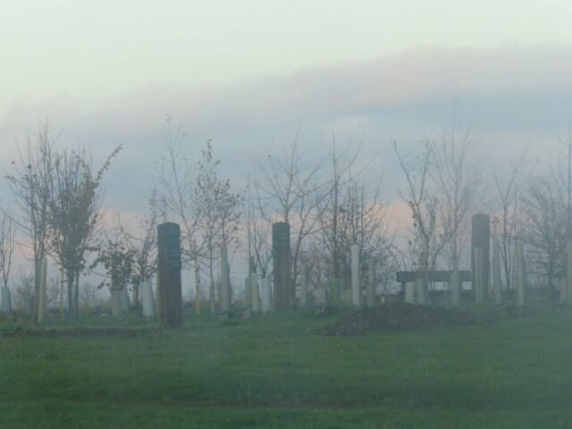 Winter Mist over Woodland Burial Area at Sun Rising Natural Burial Ground and Nature Reserve
