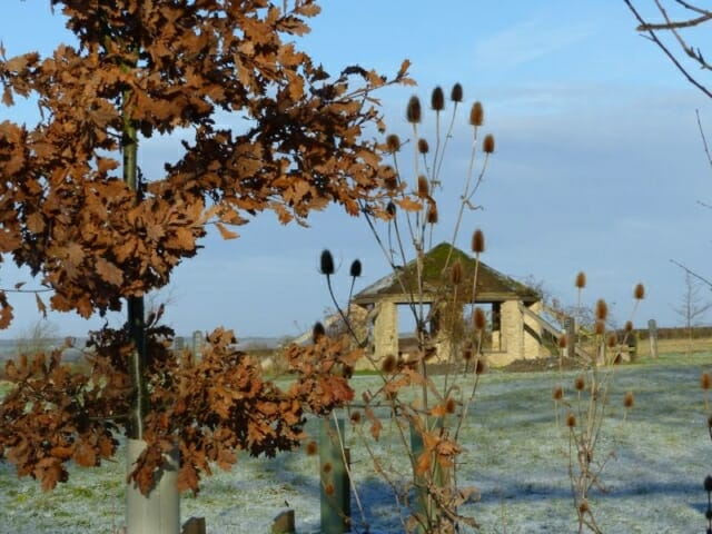 The Roundhouse and Winter Oak Leaves at Sun Rising Natural Burial Ground and Nature Reserve