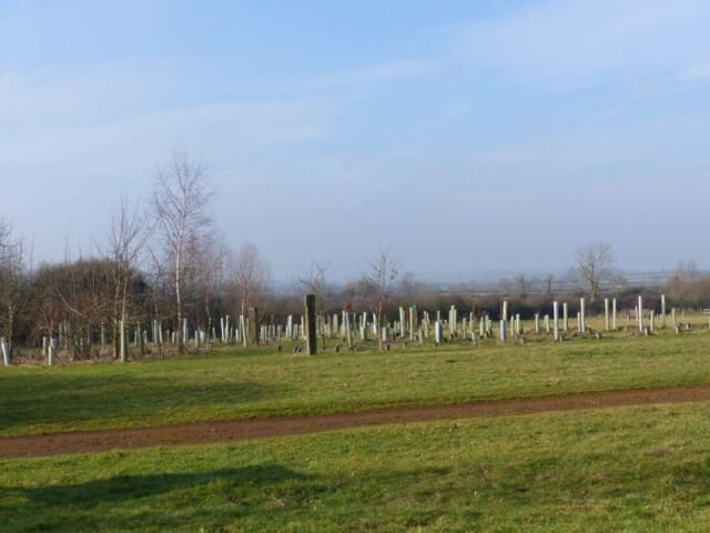 Tidy Winter Meadow to Woodland Burial Area at Sun Rising Natural Burial Ground and Nature Reserve