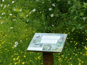 Habitat Interpretation Board at Sun Rising