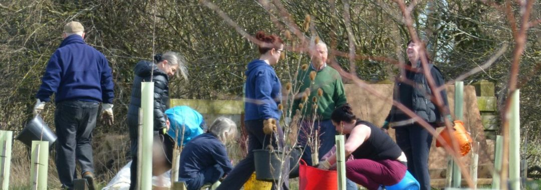 Getting involved with the Friends of Sun Rising banner: volunteers planting trees.