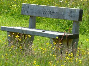 Memorial Bench at Sun Rising