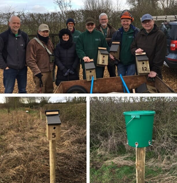 Tree Sparrow Team, Nest Box and Feeder